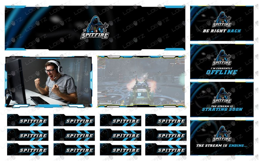 Premium Assassin Twitch Overlay Stream Package With Unique Assassin Logo