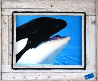 """""""Smiling Orca"""""""