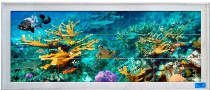 lobster trap framed tile mural with reef, turtle, fish, and corals