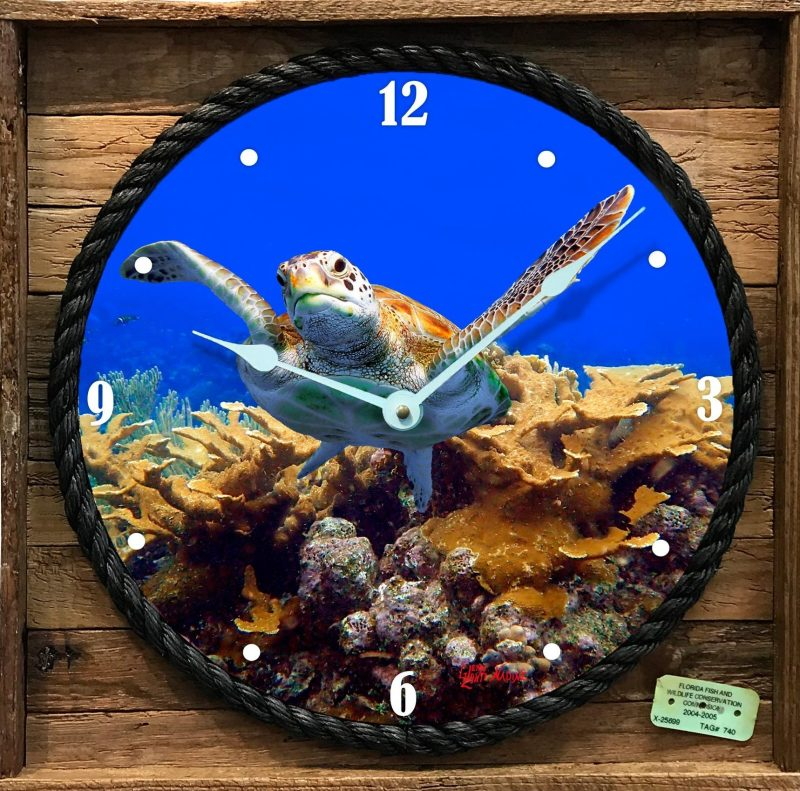"""TURTLE AND CORAL"" FRAMED CLOCK"