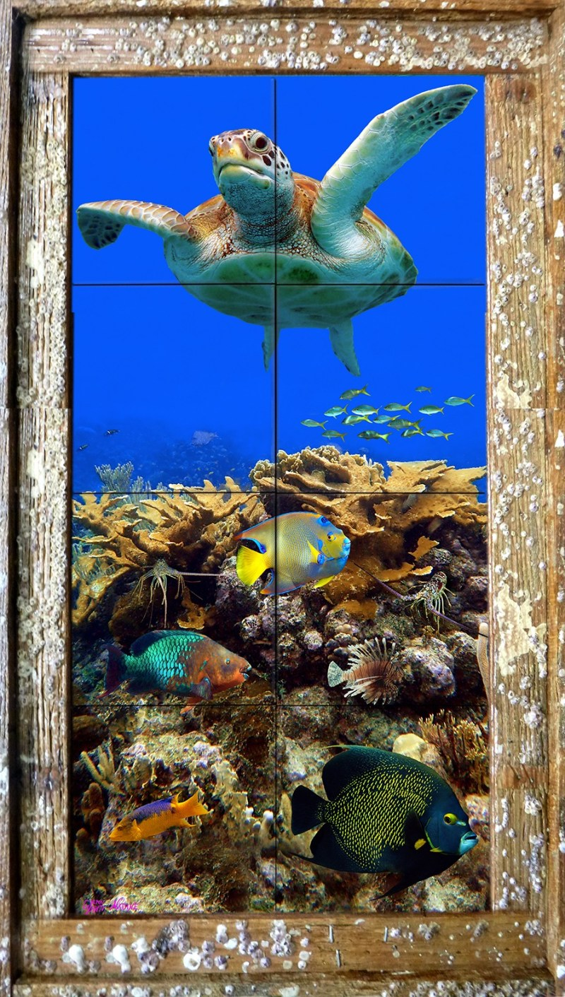 Reef Top Flyer Tile Mural