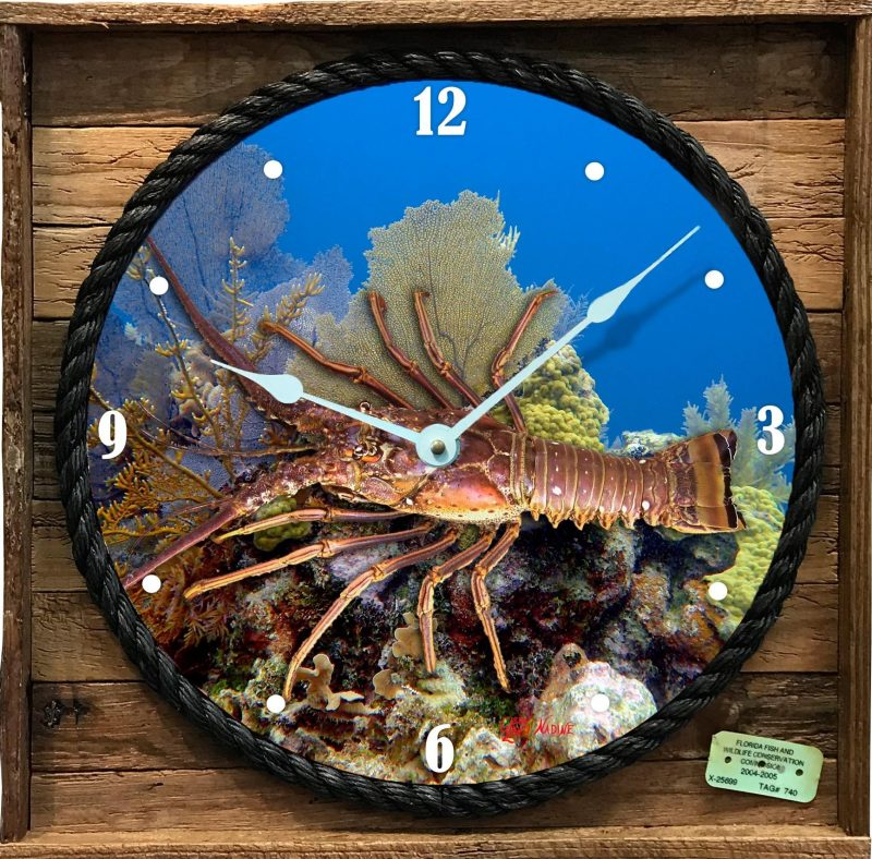 Caribbean Lobster on a reef on a clock framed in lobster trap wood