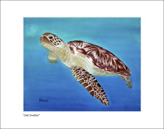 Unframed Art Prints, Paintings and Underwater Photography