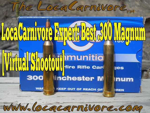 LocaCarnivore Expert: Best .300 Magnum [Virtual Shootout]