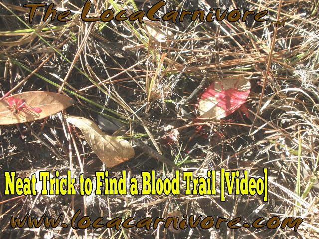 Neat Trick to Find a Blood Trail [Video]