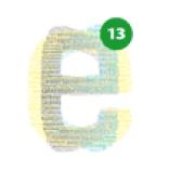 E13 logo