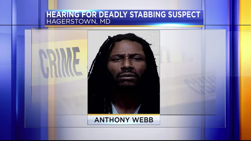 Hearing for deadly stabbing suspect_30576361