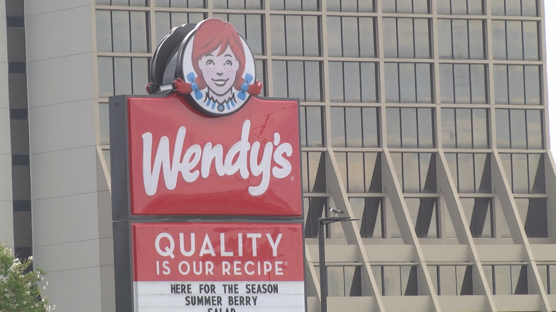 Wendy's pic1_219649-842137442