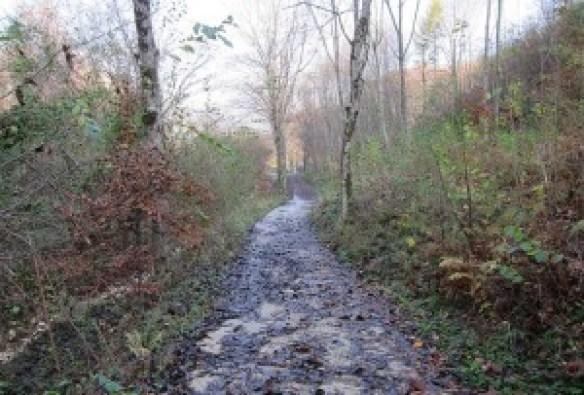 sentiero 1025 strada del verdiso carrareccia
