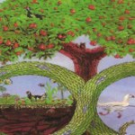 Permaculture and the Myth of Scarcity