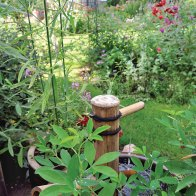 A little hidden water feature. There are surprises all through the garden.