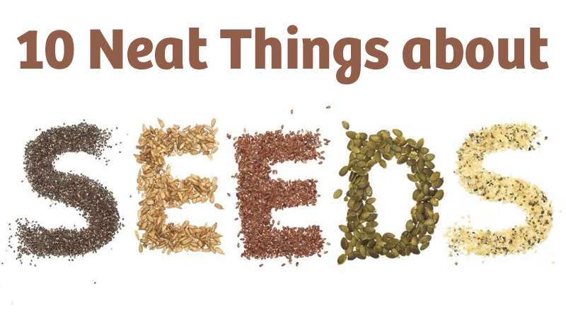10 neat things about seeds