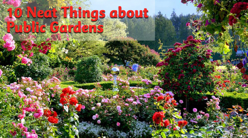 10 neat things about public gardens