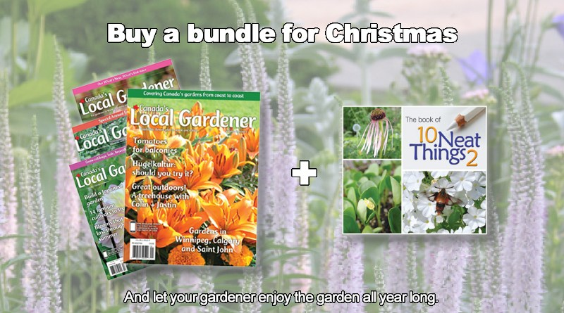 Christmas gift bundle