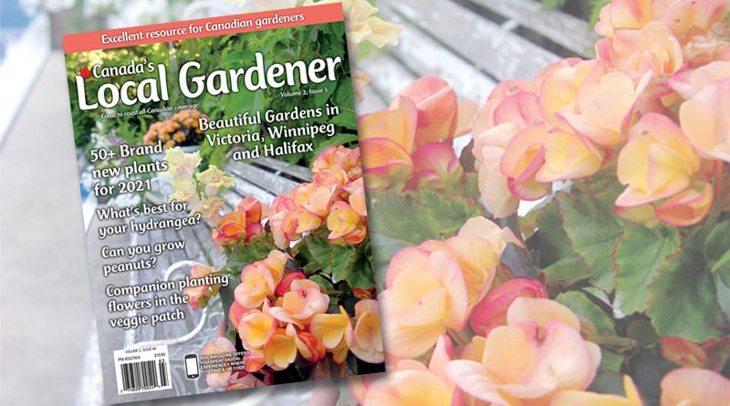 Canada's local gardener magazine volume 2 issue 3
