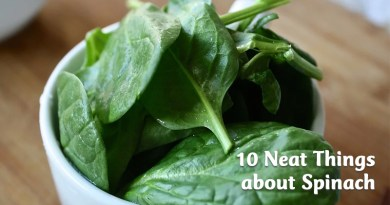 10 Neat Things about Spinach