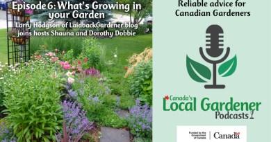 Canada's local gardener podcast episode 6 what's growing in your garden