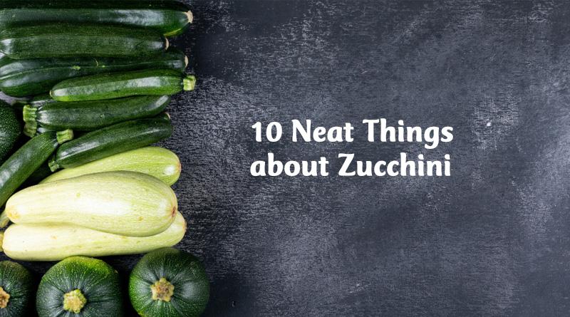 10 Neat things about Zucchini