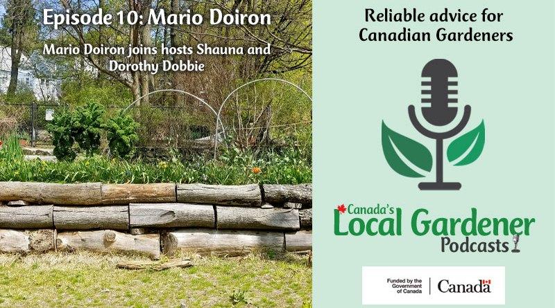 Canada's Local Gardener Podcast Episode 10: Mario Doiron