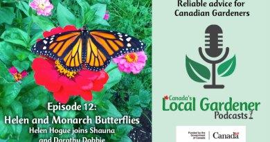 Helen and Monarch Butterflies