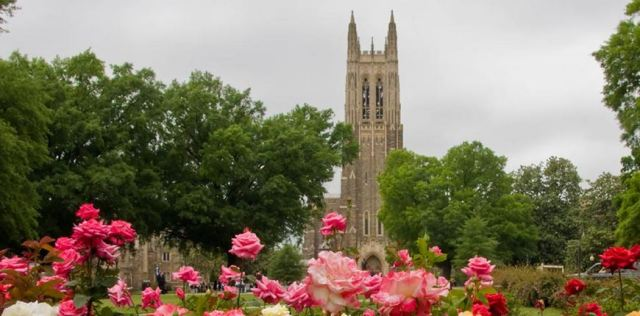 What's a need to see while touring Chapel Hill