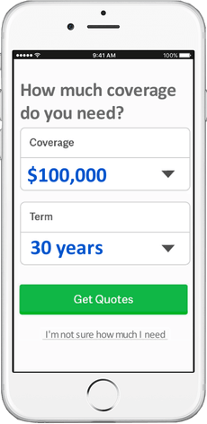 Select A Quote Life Insurance Life Insurance Quotes Online  Life Insurance Agents On Standby