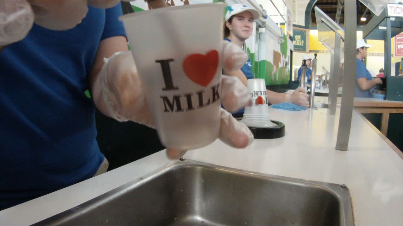 Milk at the fair