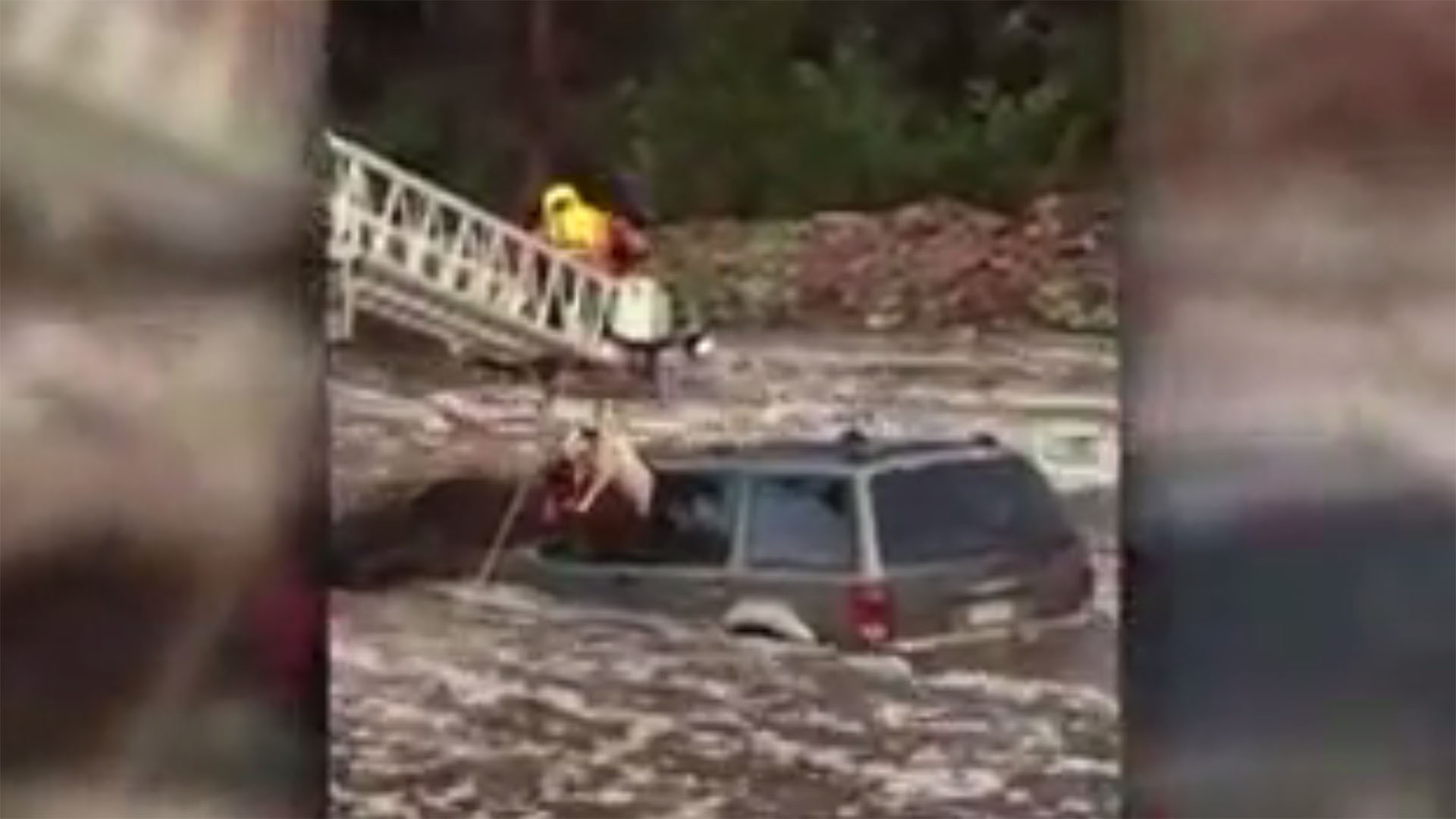 man, dog rescued from raging creek, video screenshot38174045-159532