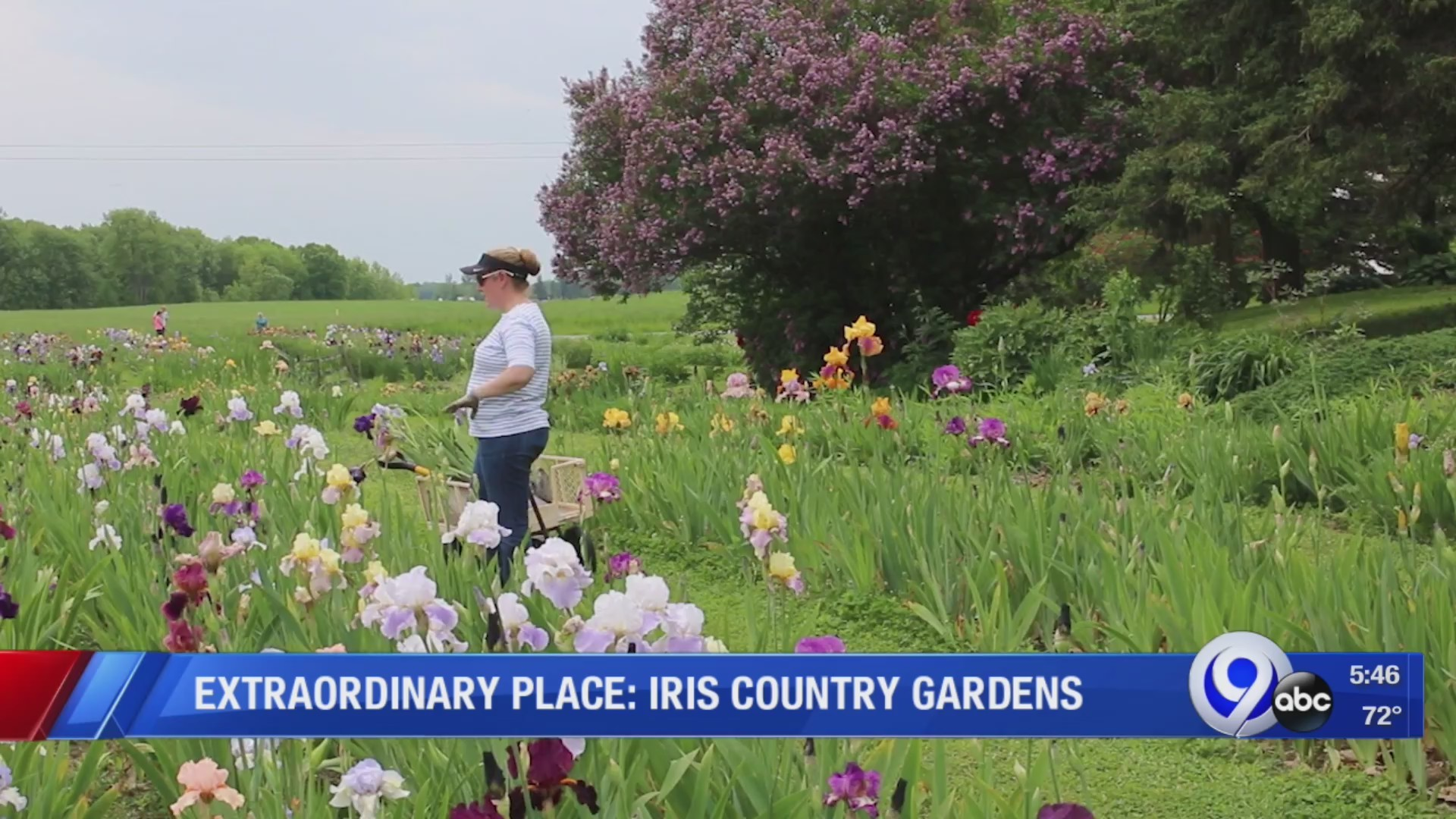 Iris_Country_Gardens__Extraordinary_Plac_0_20190606220251