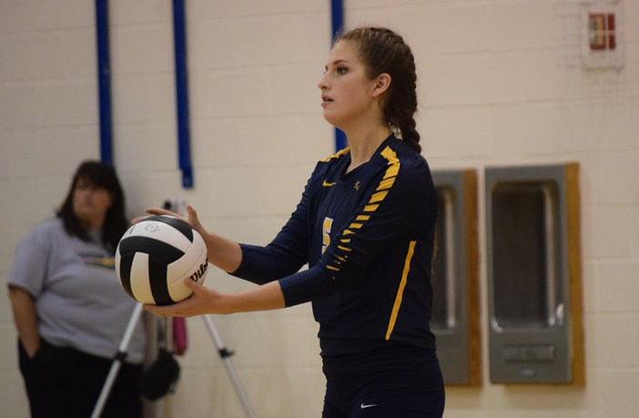 Andersen Vaughan Loudoun County Volleyball