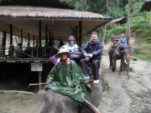Montando en elefante
