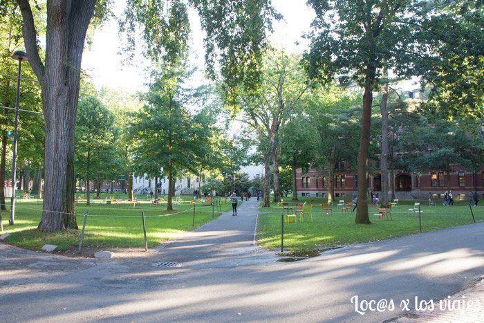 Harvard-2