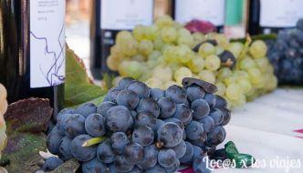 Fiesta de la vendimia en la Rioja Alavesa