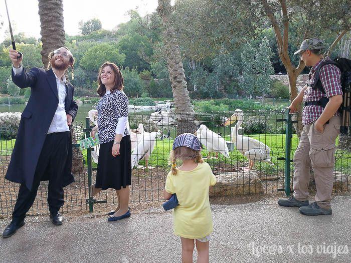 Israel con niños: Zoo bíblico de Jerusalén