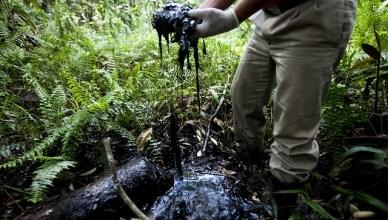 De bodem in heel de regio is nog steeds zwaar vervuild door de afval van ruwe olie