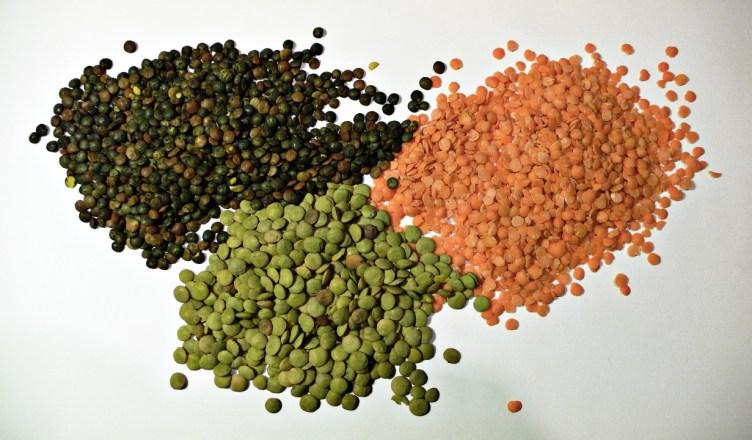 Linzen zijn er in alle kleuren en soorten. In de biologische keuken terug populair. Tot in de negentiende eeuw waren zij een essentieel onderdeel van de voeding in Europa