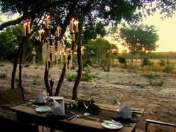Sable Sands Bush Dinner.gallery_image.8