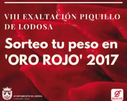 Sorteo_Exaltacion_2017
