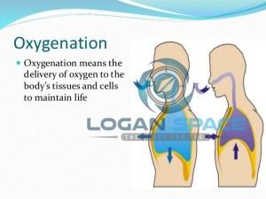 The oxygenation