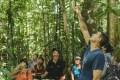 International Tropical Timber Organisation Fellowship Program 2021