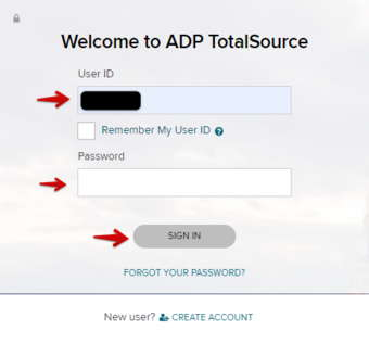 ADP TotalSource Password Administrator
