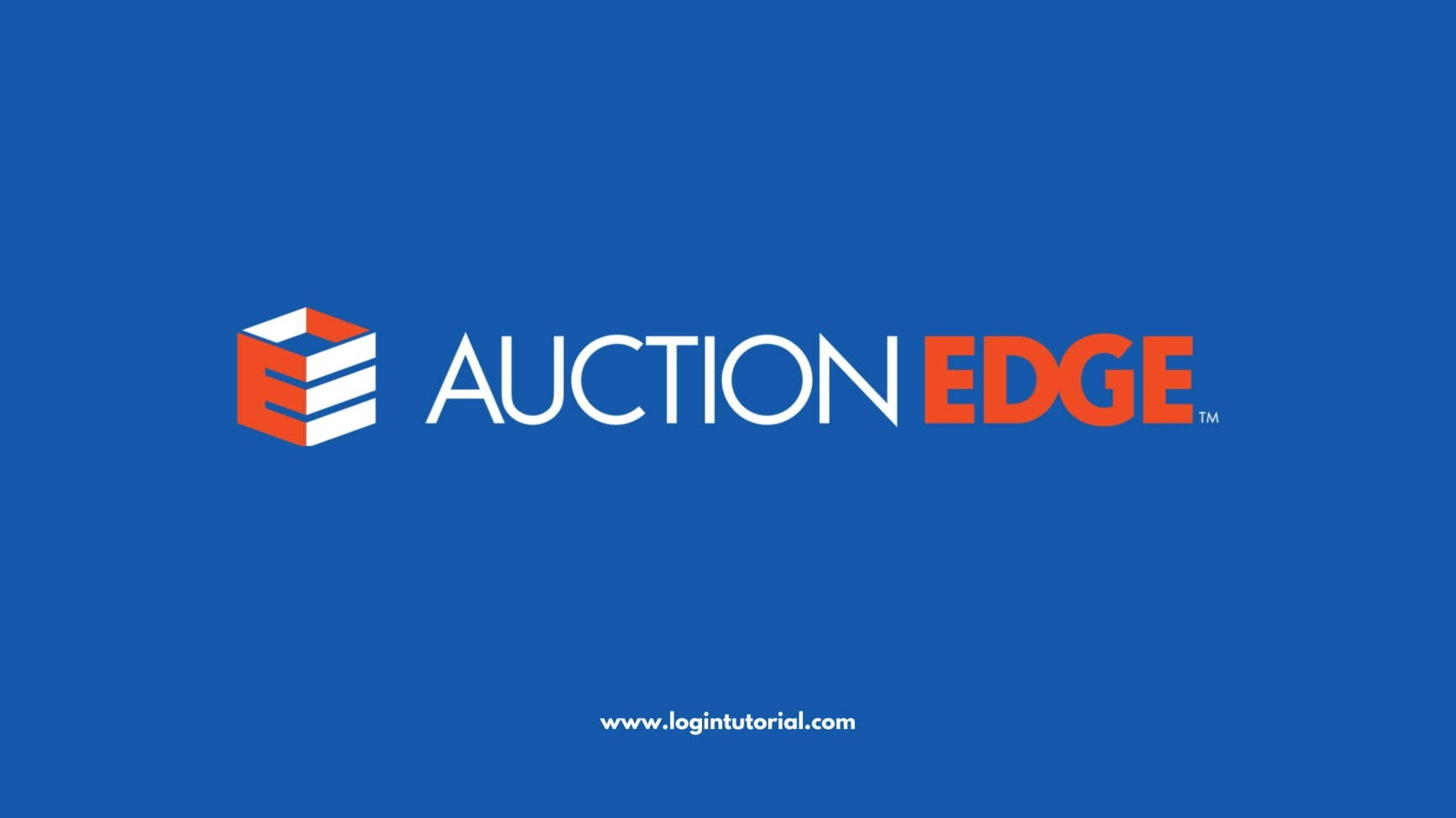 Read more about the article AUCTION EDGE, INC.