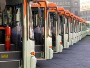 vários ônibus para o transporte público