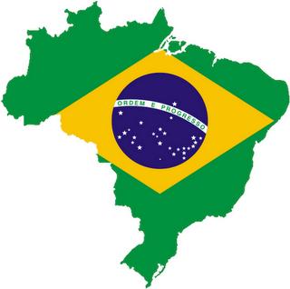 bandeira do brasil - país do futuro