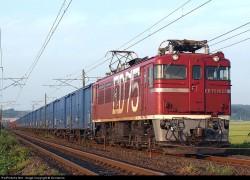trem carga ferroviário solucao para o porto