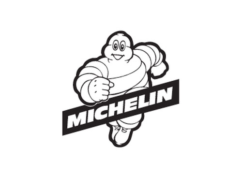 Image result for michelin logo