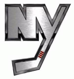 Image result for ny islanders NY logo