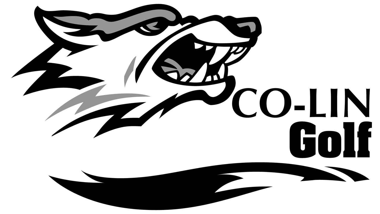 Wolf Head Logos