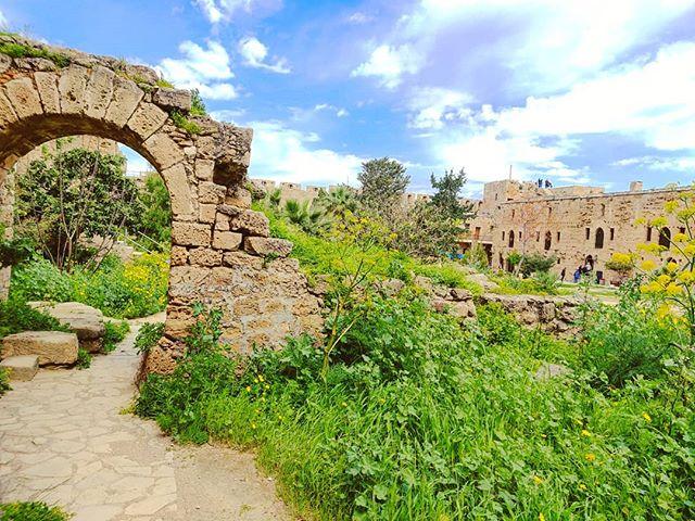 The lost garden #castle #kyrenia #cyprus #travel #travelling #toptags #traveler #instatravel #instago #wanderlust #trip #holiday #photooftheday #lifeofadventure #doyoutravel #instapassport #instatraveling #mytravelgram #travelgram #travelingram #igtravel #instalife #ig_worldphoto #traveling #travelblog #instago #travelstoke