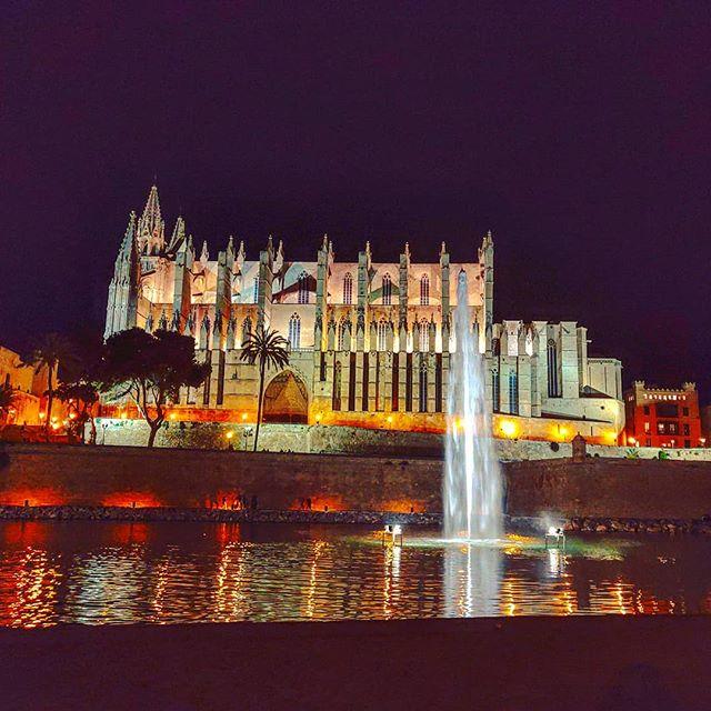 The magic of Palma by night •••#mallorca #palma #cathedral #fountain #nightlights #cruising #cruise #crew #sailing #travel #traveling #traveler #instatravel #instapassport #instatraveling #travelgram #travelingram #igtravel #travelblog #sea #travelstoke